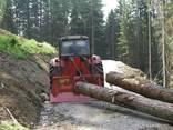Suktuvai miškų ūkiui Tajfun (Slovenija)., photo 2