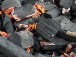 Фруктовый уголь - фото 3