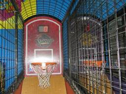 Game-playing automate sport simulator NBA Hoops - photo 2