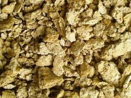 Corn Germ Feed Concentrate