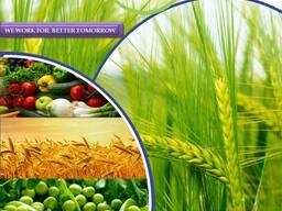 Pesticīdu ražotājs un piegādātājs visā pasaulē
