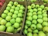 Польское яблоко от производителя La-Sad - фото 8
