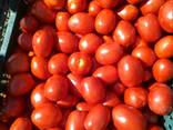 Продаем овощи в ассортименте. - фото 10