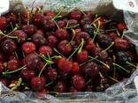 Sweet cherries from Greece - фото 1
