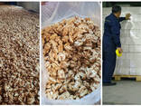 Walnut wholesale, from Kyrgyzstan / Грецкий орех из Киргизии - photo 3